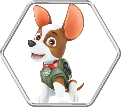 What Dog Is Tracker In Paw Patrol